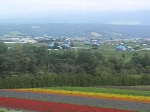 富良野富田ファーム20090804-001