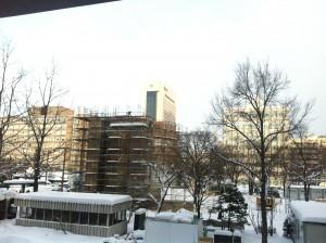 札幌雪祭り 1月14日 大雪像 良い天気です。
